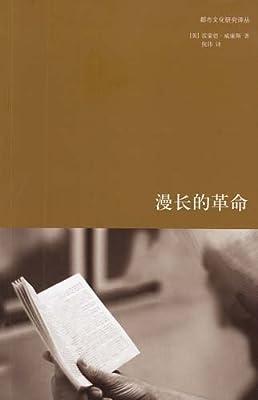 漫长的革命/都市文化研究译丛.pdf