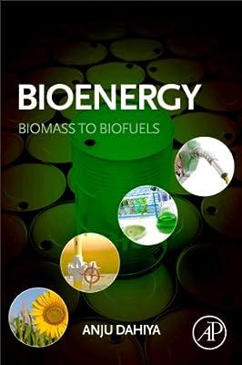 Biomass to Biofuels.pdf