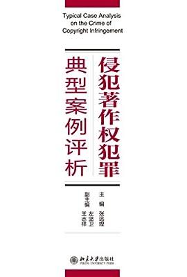 侵犯著作权犯罪典型案例评析.pdf