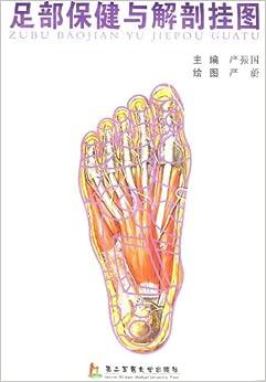 足部保健与解剖挂图 严振国, 严蔚 摘要 书