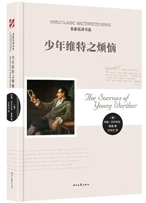 少年维特之烦恼.pdf