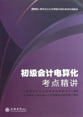 中公•会计人•上海市会计从业资格无纸化考试专用教材:初级会计电算化考点精讲.pdf