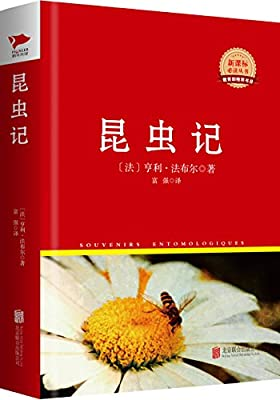 新课标必读丛书:昆虫记.pdf