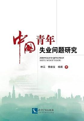 中国青年失业问题研究.pdf
