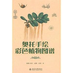 > 奥托手绘彩色植物图谱 ao tuo shou hui cai se zhi wu tu pu