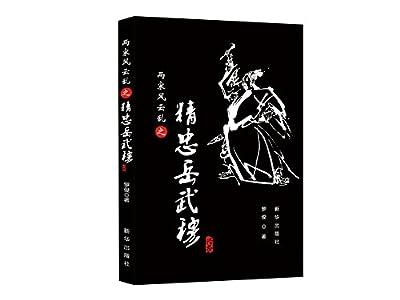 两宋风云乱之精忠岳武穆.pdf