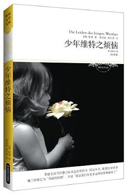 文学文库026:少年维特之烦恼.pdf