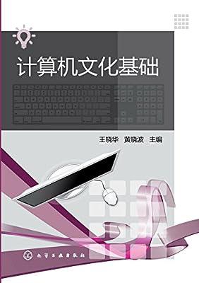 计算机文化基础.pdf