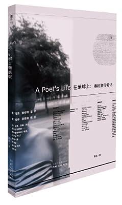 在地球上:春树旅行笔记.pdf