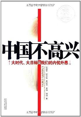 中国不高兴:大时代、大目标及我们的内忧外患.pdf