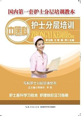 中医护士分层培训.pdf