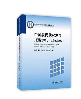 中国农民状况发展报告2013.pdf