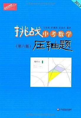 2013挑战中考数学压轴题.pdf