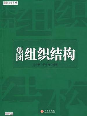 集团组织结构 (仁达方略集团管控系列) (kindle电子书)