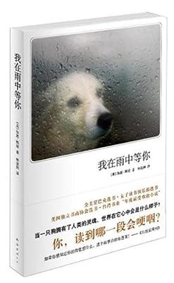 我在雨中等你.pdf