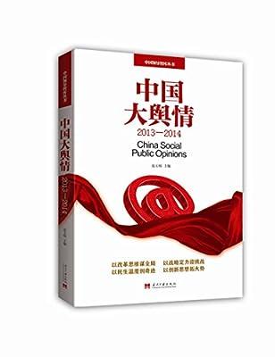 中国大舆情.pdf