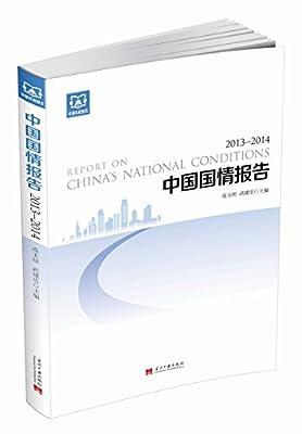 中国国情报告.pdf
