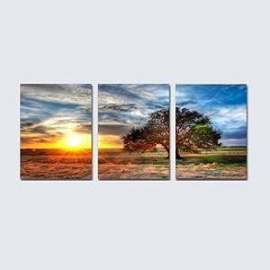 美时美刻 现代风景无框画晨光大树装饰画客厅卧室挂画酒店客房壁画