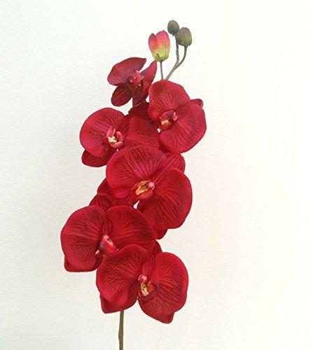 d款缎面蝴蝶兰仿真花单支 欧式绢花假花艺术插花装饰花卉 酒红色