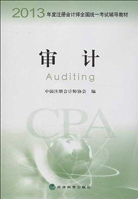 注册会计师全国统一考试辅导教材:审计.pdf