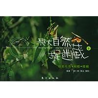 http://ec4.images-amazon.com/images/I/41Suuh9BH3L._AA200_.jpg