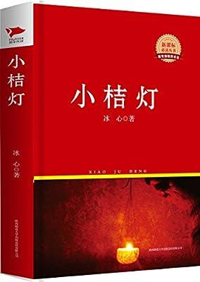新课标必读丛书:小桔灯.pdf