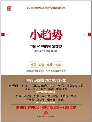 小趋势:中国经济的关键变数.pdf
