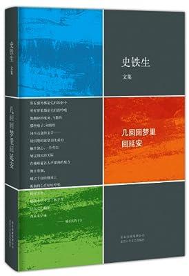 史铁生文集:几回回梦里回延安.pdf
