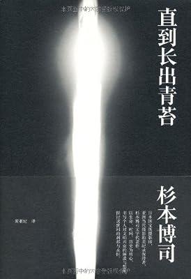 直到长出青苔.pdf