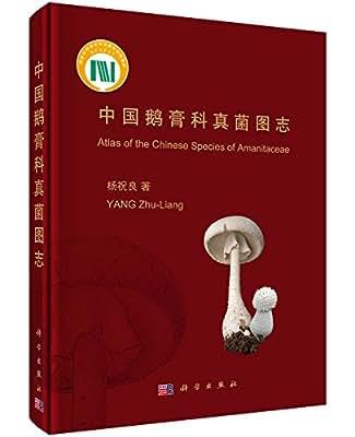 中国鹅膏科真菌图志.pdf