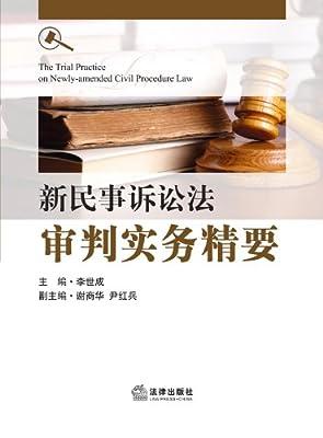 新民事诉讼法审判实务精要.pdf