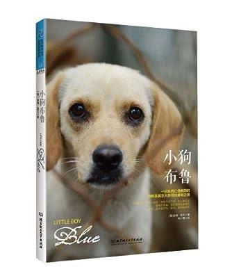 小狗布鲁:一只从死亡线救回的狗狗及其主人的寻找真相之旅.pdf