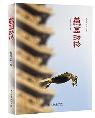 燕园动物.pdf