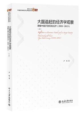 大国追赶的经济学观察:理解中国开放宏观经济.pdf