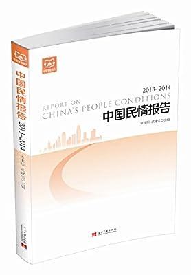 中国民情报告.pdf