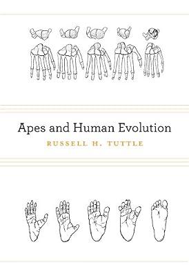 Apes and Human Evolution.pdf