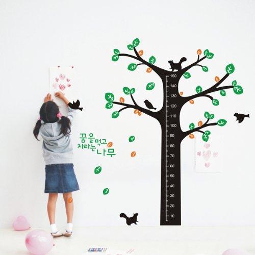 幼儿园教室布置身高树身