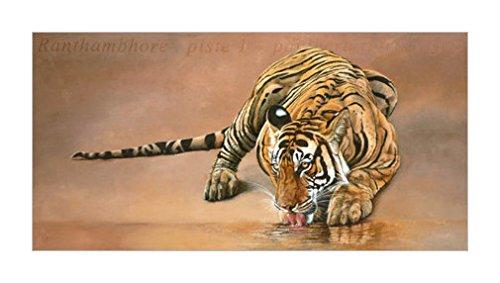 野猫 野生动物装饰画 动物装饰画分类 动物装饰画 动物风格 野生动物