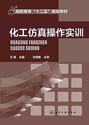 化工仿真操作实训.pdf