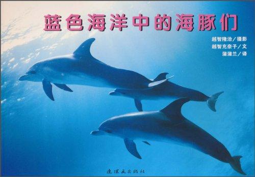 壁纸 动物 海洋动物 鲸鱼 桌面 500_348