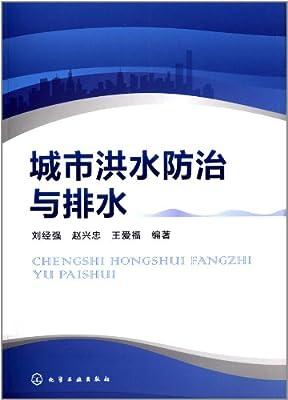 城市洪水防治与排水.pdf
