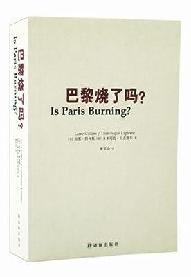 巴黎烧了吗?.pdf