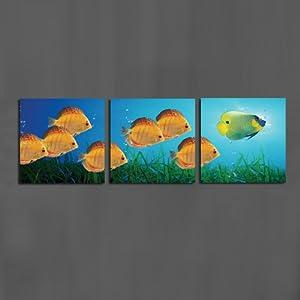 美时美刻 动物壁画热带鱼海底世界客厅装饰画三联画电视背景墙无框画