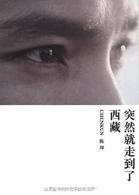 突然就走到了西藏.pdf