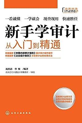 新手学审计:从入门到精通.pdf
