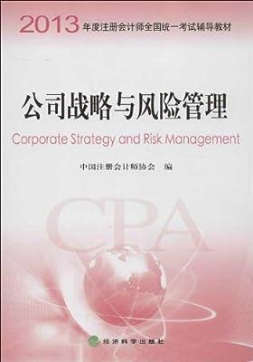 注册会计师全国统一考试辅导教材:公司战略与风险管理.pdf