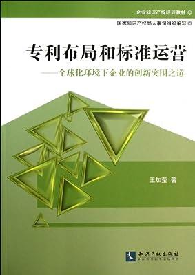 专利布局和标准运营--全球化环境下企业的创新突围之道.pdf
