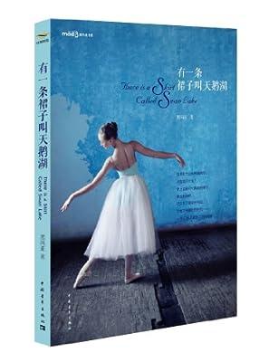 有一条裙子叫天鹅湖.pdf