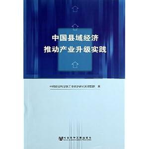 中国县域经济推动产业升级实践