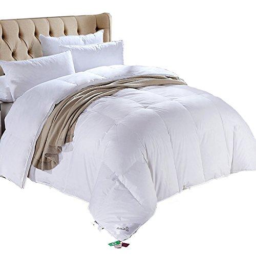 羽绒被大概多少钱_五星级酒店品质秋冬被芯加大加厚双人被柔软立体边防钻绒羽绒被白色